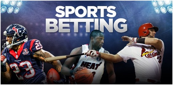 What to look for in online sports betting